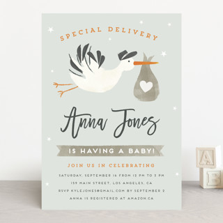 Stork Delivery Baby Shower Invitations
