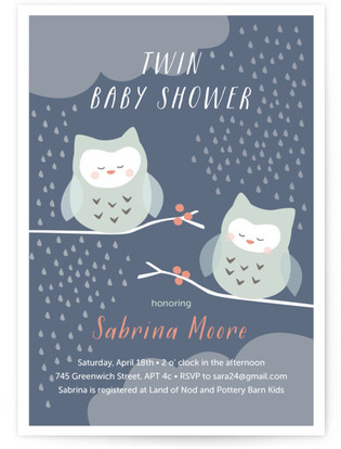 Twin Owl Babies Baby Shower Invitations