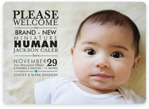 Mini Human