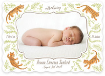 Wild Side Birth Announcements