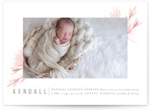 Little Sweetie Birth Announcements