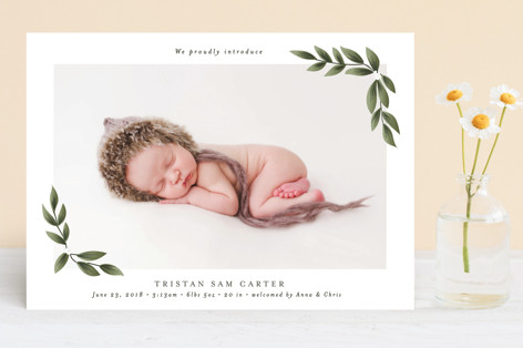 Organic Birth Announcements