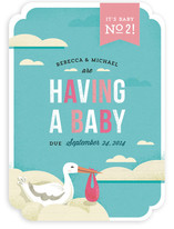 The Stork's Surprise Birth Announcements