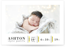 Birth Stats
