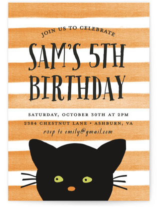 Striped Cat Children's Birthday Party Invitations