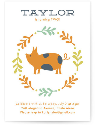 Farm Friends Children's Birthday Party Invitations