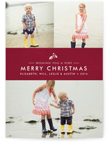 Splendid Pinecone Christmas Photo Cards