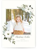 White Poinsettia & Greens