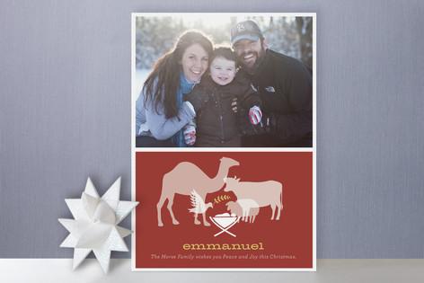 Animal Nativity Christmas Photo Cards