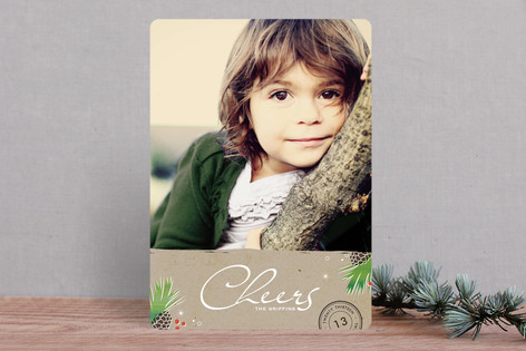 Pinecones Christmas Photo Cards
