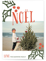 Holly Berry Noel by robin ott design