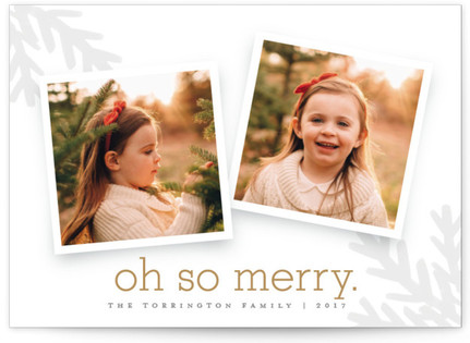 Merry Branches Christmas Photo Cards