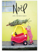 Handwritten Noel by Sarah Curry