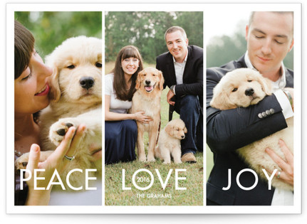 More the Merrier Christmas Photo Cards
