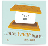 I Like You S'More Every Day
