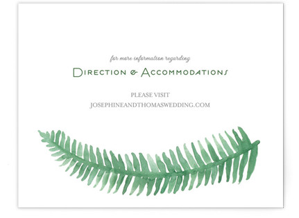 Painted Ferns Directions Cards