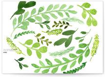 Leaves of Green by Katie Lyn