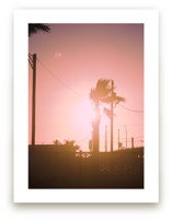 Pink Palm by Erin Beutel