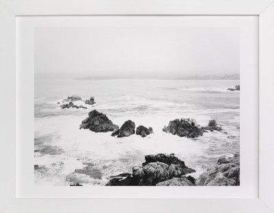 Point Lobos Flash Art Print