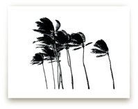Palm Trees in the Wind by Simone Klein