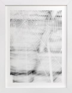 Gossamer Grid Art Print