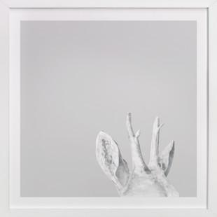 A Twig Breaks Art Print