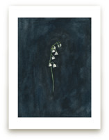 Remember: Lily of the V... by Renee Anne