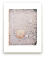 Beachcomber I by Ann Gardner