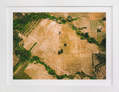 Parched Lands Art Print