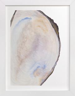 The Half Shell Art Print