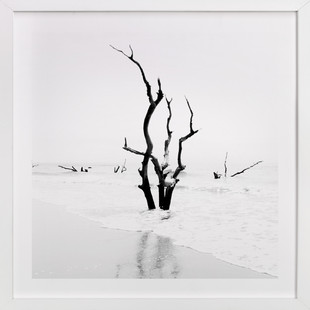Boneyard Beach Art Print