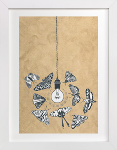 Like Moths to a Light Art Print