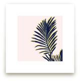Palm Study #2