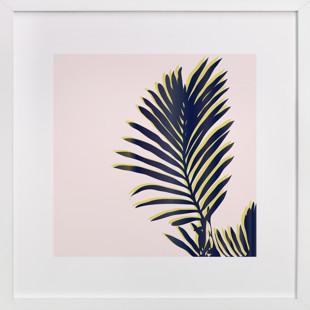 Palm Study #2 Art Print