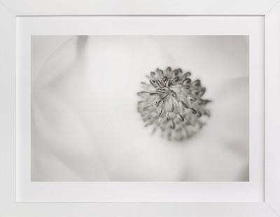 Magnolia Blossoming Art Print