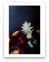 Dark Fall Flowers
