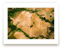 Parched Lands by Hello Sophie Design Lab