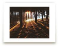 Light Beams by Christian Florin