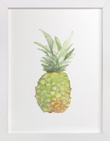 Watercolor Piña
