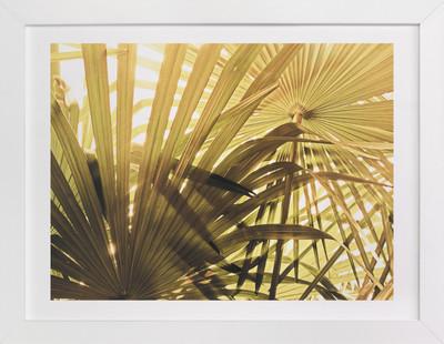 Green Palms Art Print
