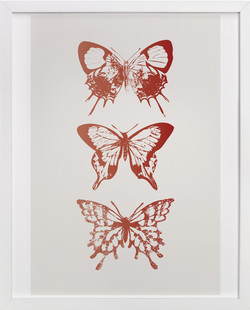 Butterfly Trio Art Print