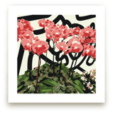 Abstract Orchids