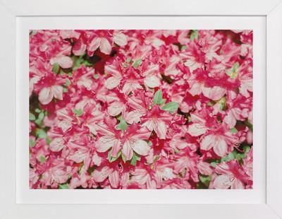 High Noon Pink Art Print