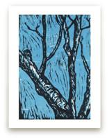 The Tree on Lorraine Av... by Casey Brock