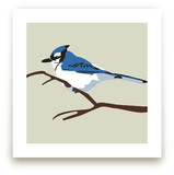 Blue Bird by Faye Femister