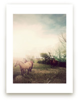Horses at Dusk by 45wall design