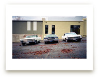 Three Cars by Celisse Muller