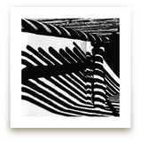 Zebras on the Wall by Christiana Hudson