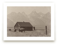 Grand Tetons National P... by Paper and Parcel