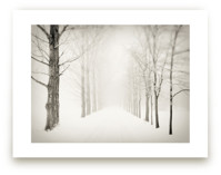 Winter Journey by Gabrial Reising